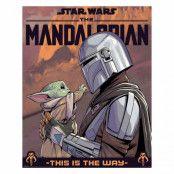 The Mandalorian, Mini Poster - Hello Little One